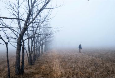 Walking Dead: Carl Loses An Eye