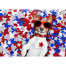 """""""13"""" Tips for Keeping Your Guide Dog Safe This July 4th"""