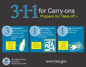 tsa 311 carry on liquids