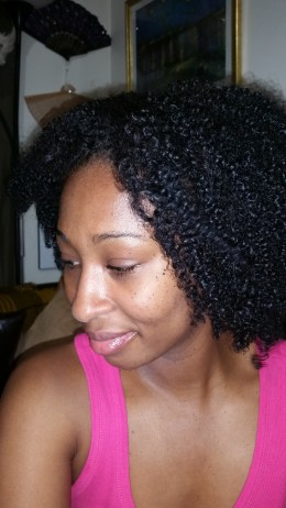 Latoya natural hair 2