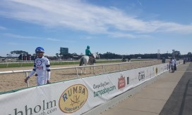 Edwin Gonzalez wearing the cutest silks you'll ever see: owner Philippe Vinh's silks for his gelding Intrepid Spot.
