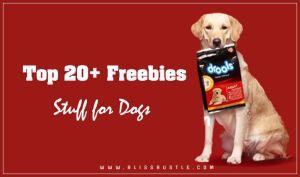 Free Dog Stuff