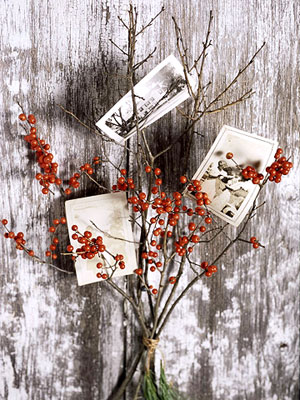 bhg stems berries photo holder