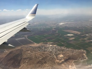 Queretaro, plane wing and cow of land from above.