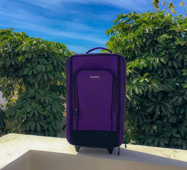 Blue skies and green, leafy trees frame a purple suitcase. It's a beautiful, if ridiculous picture
