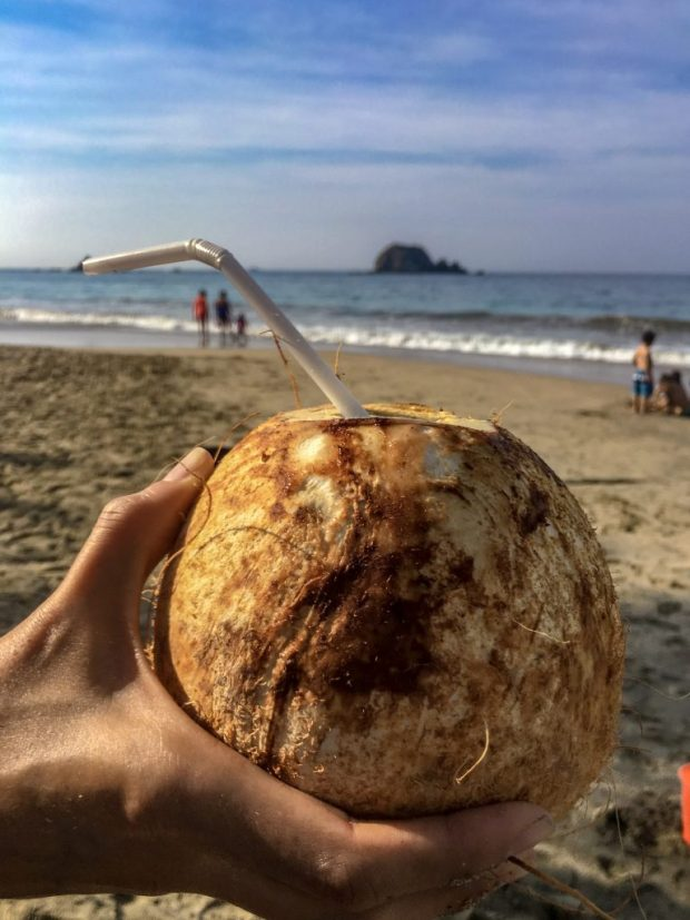 a hand holding a coconut drink, with the beach and ocean in the background.