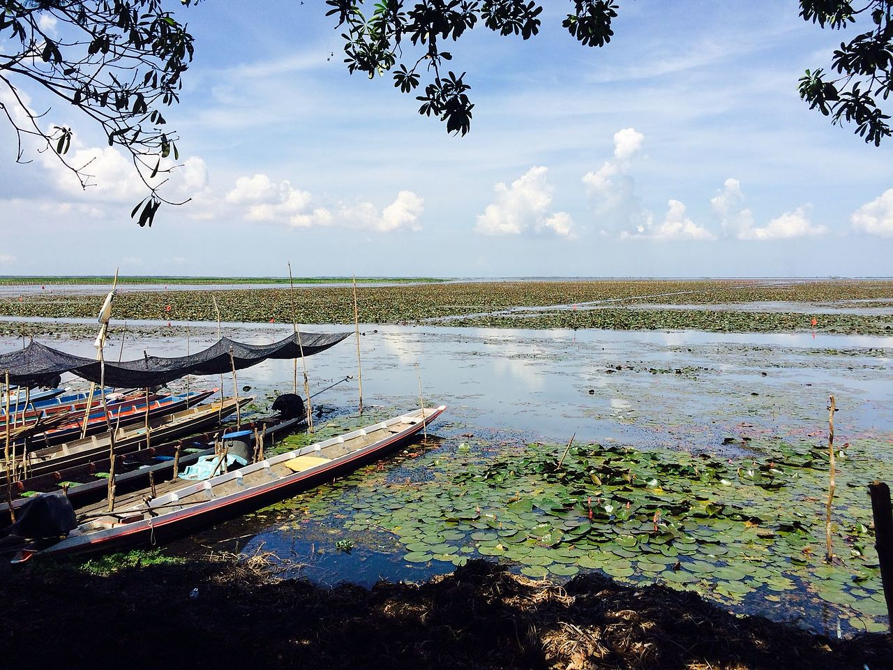 Top Tourist Attractions in Phatthalung