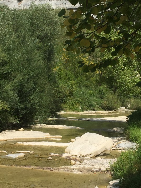 Metauro River