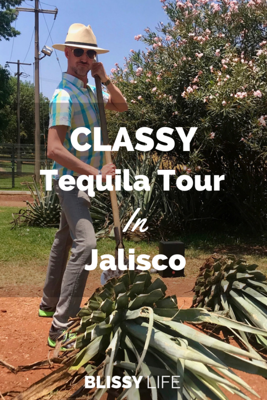CLASSY Tequila Train Tour In Jalisco