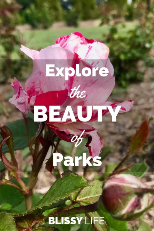 Explore the BEAUTY of Parks