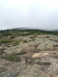 looking back at the foggy summit