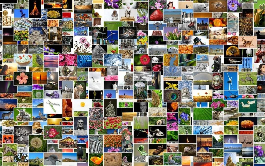 Formindsk store fotos, som skal bruges på nettet og ikke til tryk
