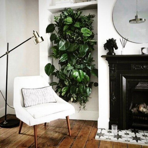 A plant wall behind a sofa in a living room