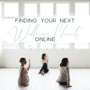 finding your next wellness clients online