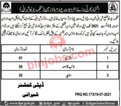 Revenue Department Sherani Jobs 2021