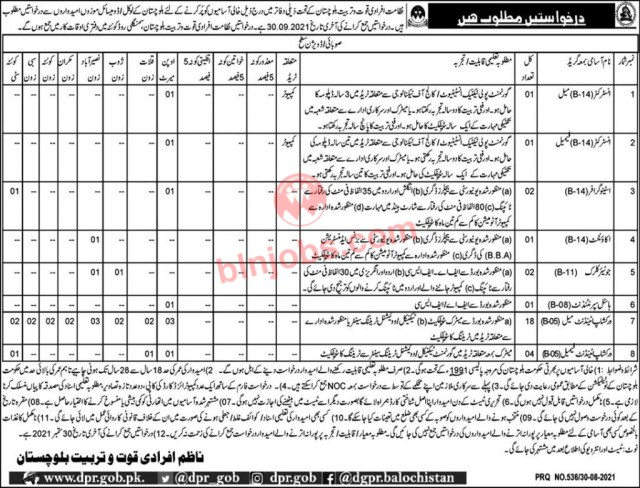 Directorate of Manpower and Training Jobs in Balochistan 2021