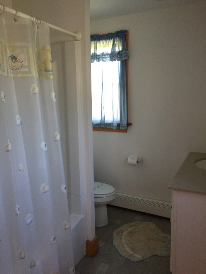 Downstairs bathroom with full bath & shower