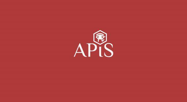 CEO of APIS Elaborates the Platform's Long-Term Vision