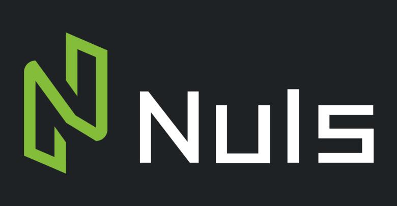 CEO of Nuls Elaborates the Long-Term Vision Behind the Platform