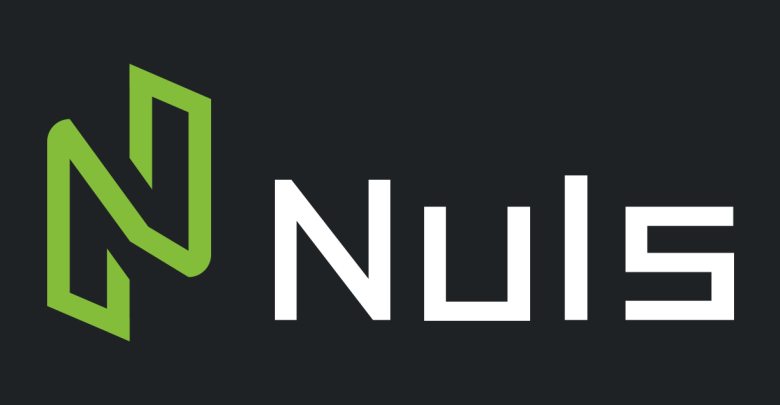 CEO of Nuls Elaborates the Long-Term Vision Behind the Platform