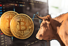 3 Reasons Why 2019 Bitcoin (BTC) Bull Run Will be Longer
