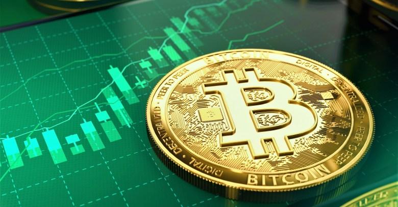 """""""$100,000 Per Bitcoin"""", Rokfin CEO Highlights Bitcoin's Services"""