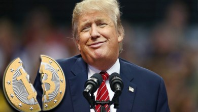 Bitcoin (BTC) Price Falls and Trump Might Just be the Reason