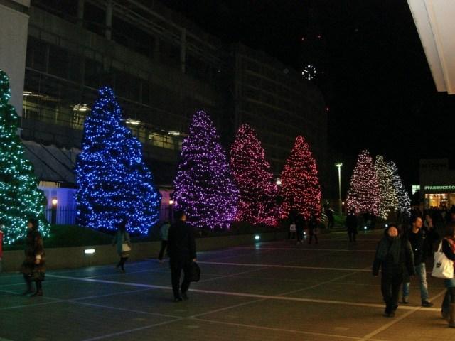 Arbres il·luminats a tocar de l'estació de Shinjuku.