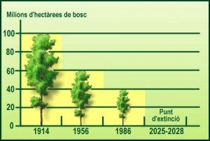 grafic desforestació progressiva