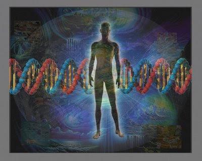 Gens i cultura: la sinèrgia que empeny l'evolució humana.