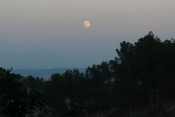 La lluna plena eixint entre bromes per la serra Calderona la nit de Nadal (24/12/2015, 18:40 h).