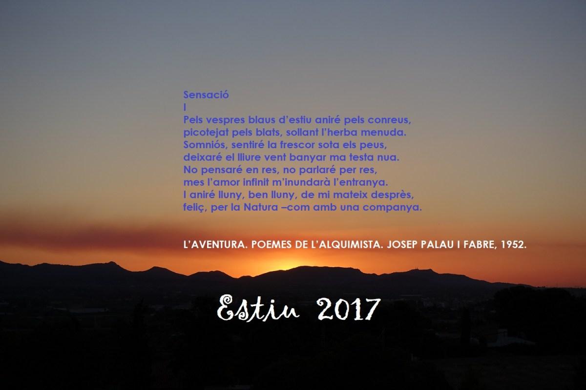 """""""A l'Estiu, el sol viu"""". Un colp d'ull a l'oratge de l'Estiu climàtic del 2017 des del Camp de Túria."""