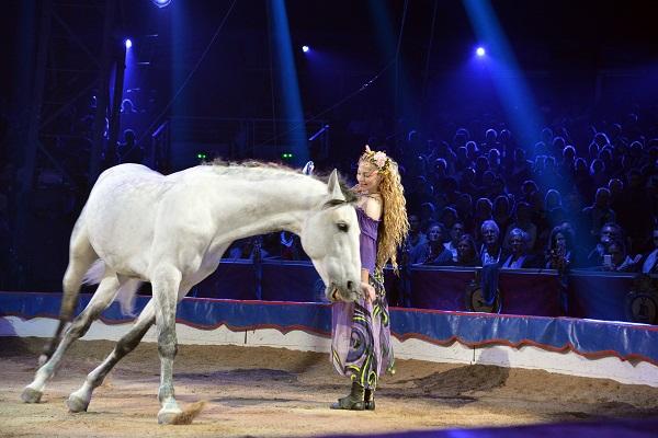 Al Parlament li queden només tres mesos per prohibir el circ amb animals