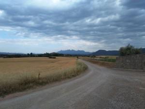 Camí de Viladelleva, en tornant del clot de les Ànimes