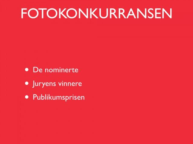 2013-11-05 - Handlekveld.006