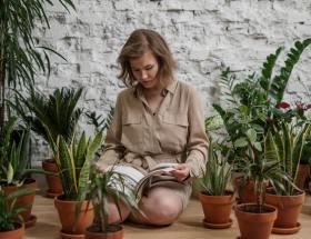 Voor kunstplanten buiten hoef je geen groene vingers te hebben!