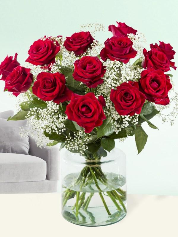 15 Rote Rosen mit Schleierkraut   Rosenstrauß online bestellen   Rosenversand Surprose.de