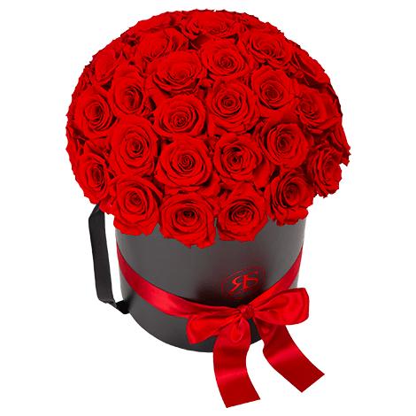 Flowerbox Longlife Aisha rund rot