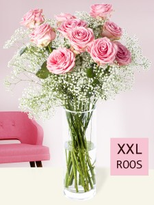 10 roze rozen met gipskruid (XXL rozen)| Rozen online bestellen & versturen | Surprose.nl