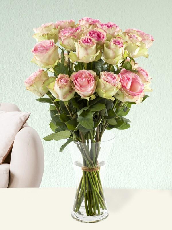 20 zachtroze rozen uit Ecuador  Rozen online bestellen & versturen   Surprose.nl