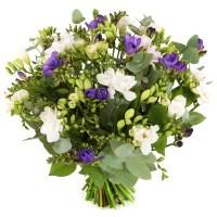 Freesia bloemen kopen Bezorgen