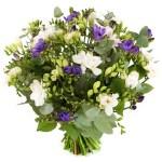 Freesia bloemen kopen bestellen of bezorgen
