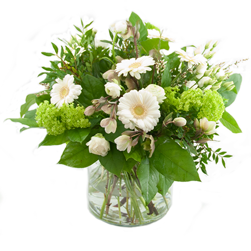 Witte voorjaarsbloemen bestellen of bezorgen online