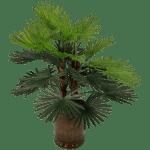 Zijdeplant groen palm met twee stammen bestellen of bezorgen