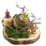 Amaryllisbol met kerstdecoratie op hout bestellen of bezorgen online