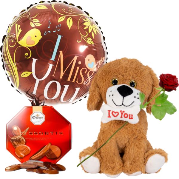 Knuffelbeer bruin hondje ballon droste chocolade bestellen of bezorgen