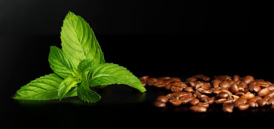 Mint and coffee beans