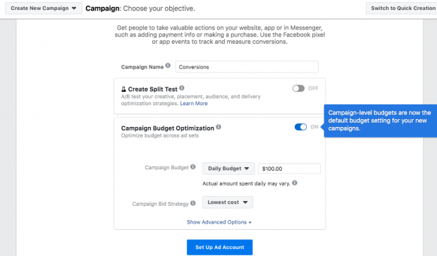 """Campaign Budget Optimization tab with Daily budget set to $100 and Campaign Bid Strategy set to """"Lowest cost"""""""