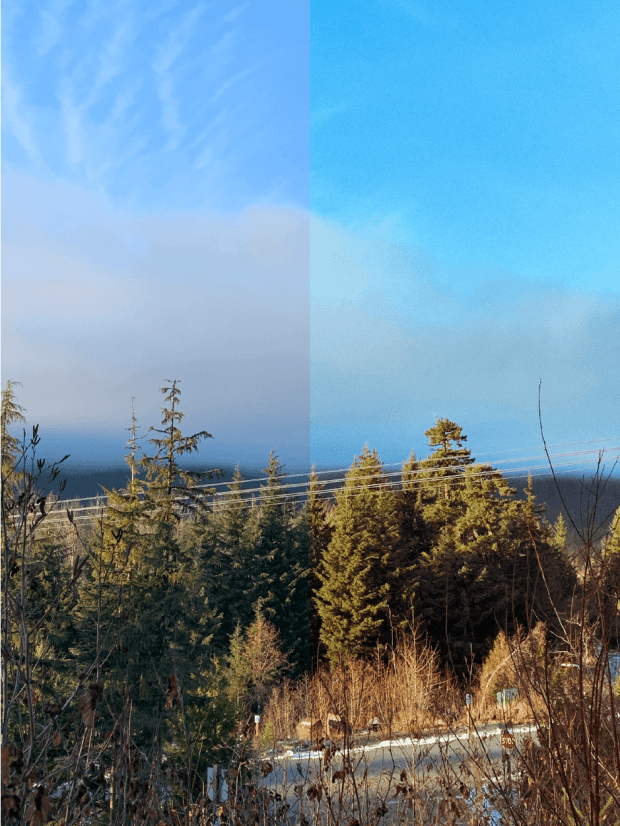 mountain view with trees and blue sky
