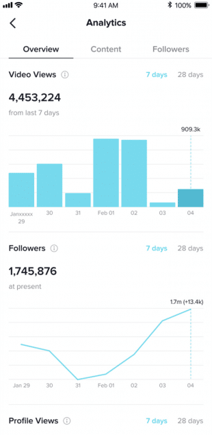 TikTok analytics overview tab